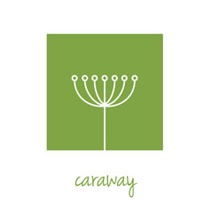 Caraway icon on green square vector