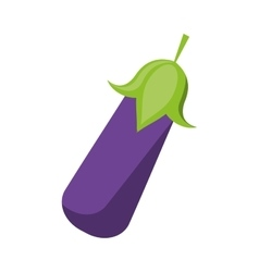 Eggplant vegetable healthy nutrition icon vector