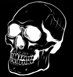 silhouette realistic red skull vector image