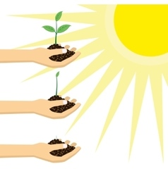 Person holding a young plant under the sun vector image