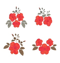 Set of Hibiscus for your Design vector image vector image
