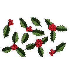 set of christmas mistletoe vector image