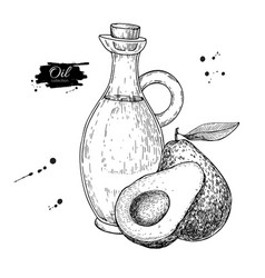 Bottle of avocado oil hand drawn vector
