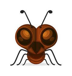 brown ants isolated on white insect icon vector image