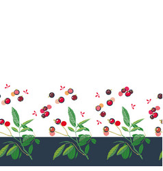 christmas border with rose plant and buds vector image