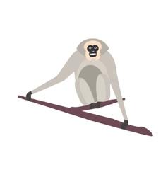 Cute monkey icon logo symbol vector image