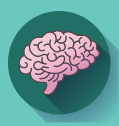human brain icon symbol intellect study vector image