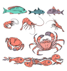 set of various sea creatures icons hand drawing vector image