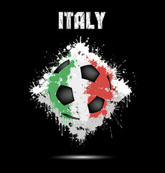 soccer ball in the color of italy vector image