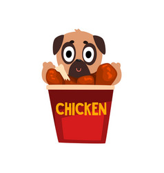 cute pug dog inside a basket of fried chicken vector image vector image