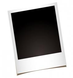 photo vector image vector image