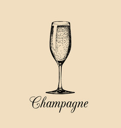 Champagne glass isolated hand drawn sketch vector