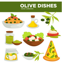 olive dishes food oil and salads vector image