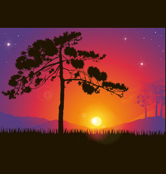 Pine Tree Against a Colorful Sunset vector