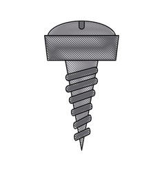 screw tool isolated vector image