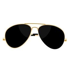 Sunglasses vector image