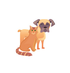 cute home pets cartoon cat and dog best friends vector image vector image