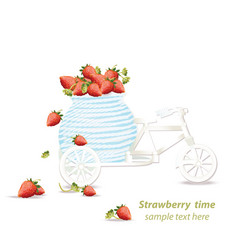 Mixed cherry and berry decoration bycicle vector
