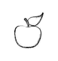 contour apple fruit icon stock vector image