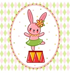 Circus rabbit on a pedestal vector