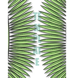 Design background with leaves of palm trees in vector