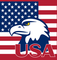 Flag of the usa and eagle vector