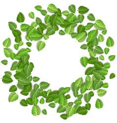flying green leaves on white background spring vector image