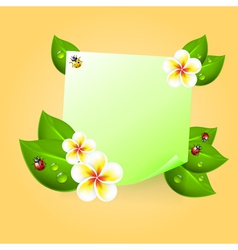 Note with leaves drops ladybird and flowers vector
