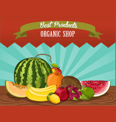 organic shop poster with fresh fruit vector image