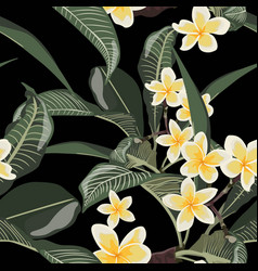 plumeria tropical exotic flower seamless pattern vector image
