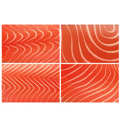 salmon trout fish meat texture background set vector image