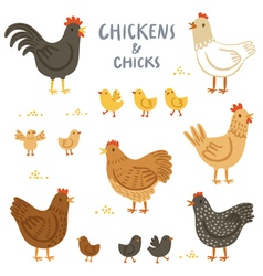 Chickens and chicks set vector image