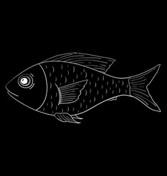 fish outline doodle on black background vector image