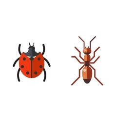 Insect ladybug and ant icon flat set isolated on vector image