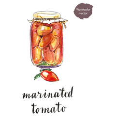 glass jar of marinated tomatoes vector image