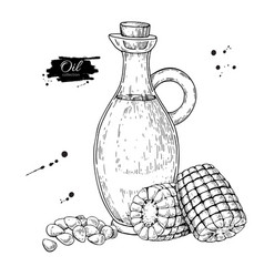 Bottle of corn cooking oil hand drawn vector