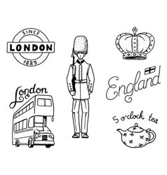 british logo crown and queen teapot with tea vector image