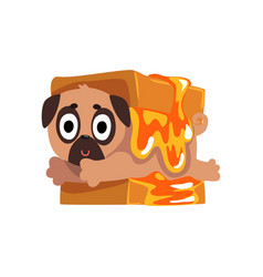 Cute funny pug dog character inside sandwich with vector