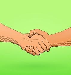 shaking hands vector image vector image