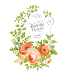 Vintage card background vector image vector image