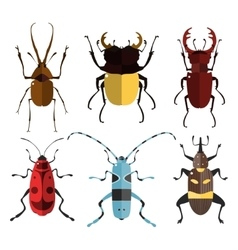 Bug icons Insect set vector image vector image