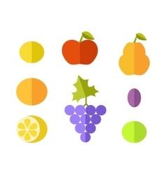 Set of Fruits Flat Design vector image