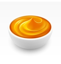 Bowl of dense Amber Honey Isolated on Background vector image