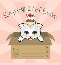 cat in box happy biirthday vector image