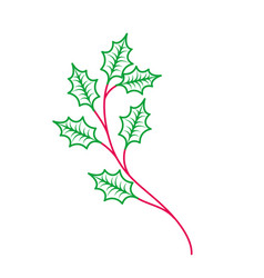 christmas tree branche spruce fir nature vector image
