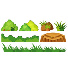 Grass and rocks in garden vector