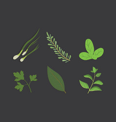 Set of drawing herbs and flowers isolated vector