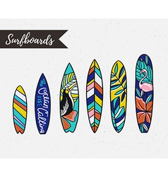 Set of surfboards with tropical plants and birds vector