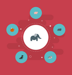 Set zoology icons flat style symbols with pig vector