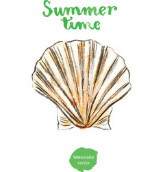 watercolor shell vector image